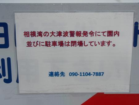 P3120663.JPG