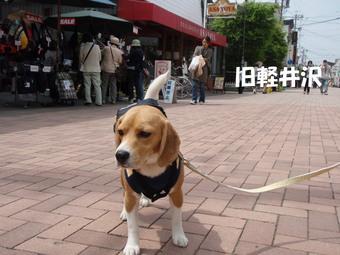軽井沢到着
