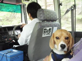安全運転でよろしくです