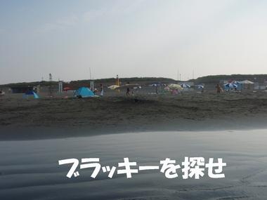 P8092081.JPG