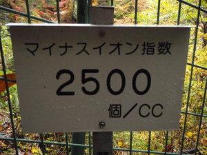 PA250261.JPG